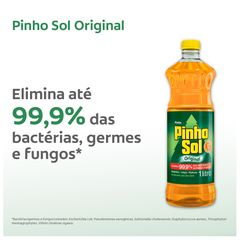 Pinho-Sol-Origina_Tela03