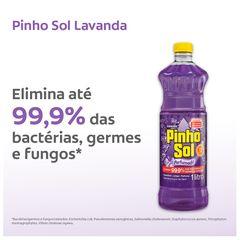 Pinho-Sol-Lavanda-1L-Tela03